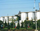 Qilu Petrochemical coking plant